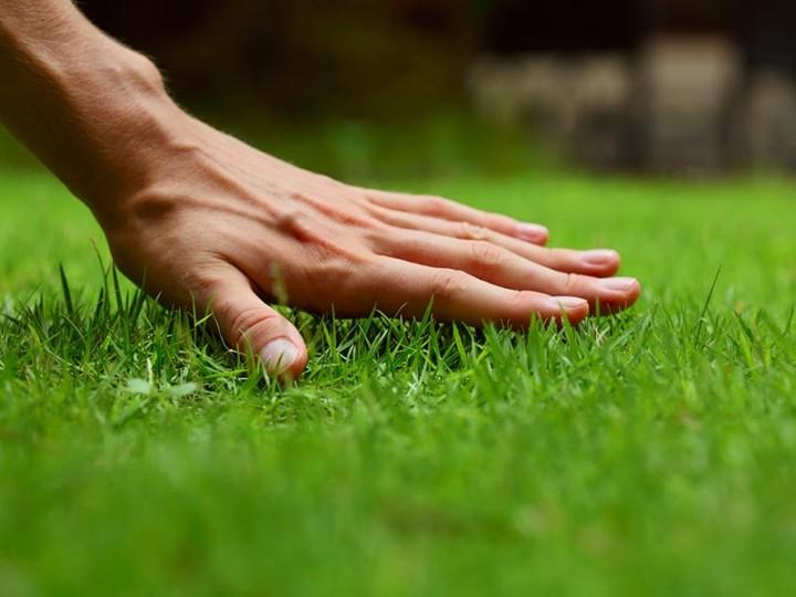 Jarná starostlivosť o trávnik, prevzdušňovanie