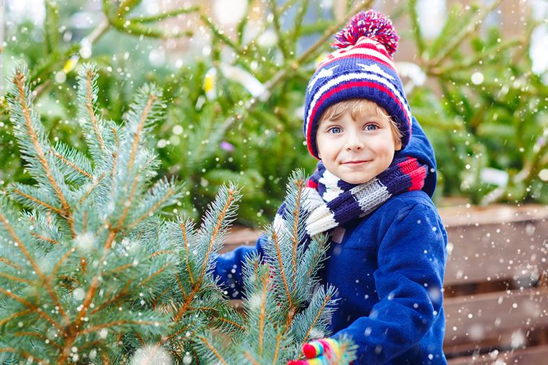 vianoce strom