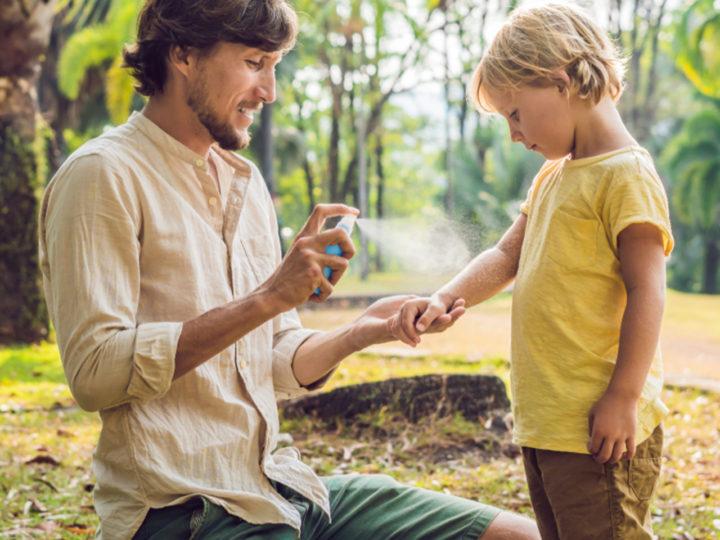 Chráňte sa pred upírmi v podobe hmyzu bez chémie!