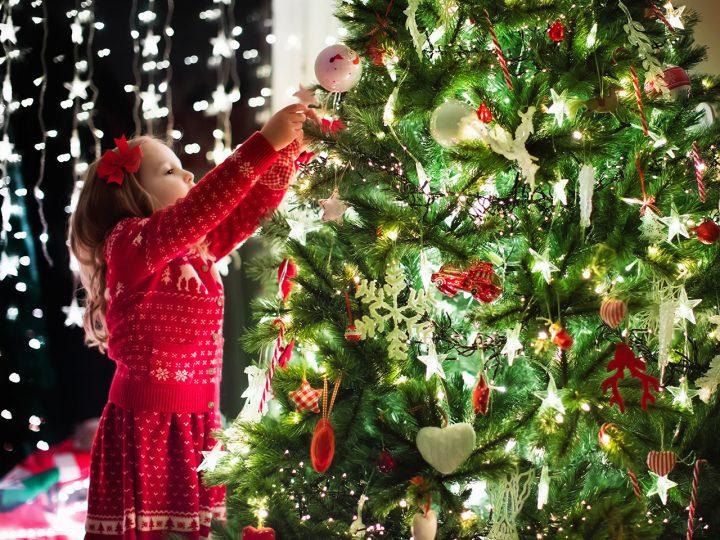 Ktoré vianočné stromčeky dokážu naozaj ohúriť?