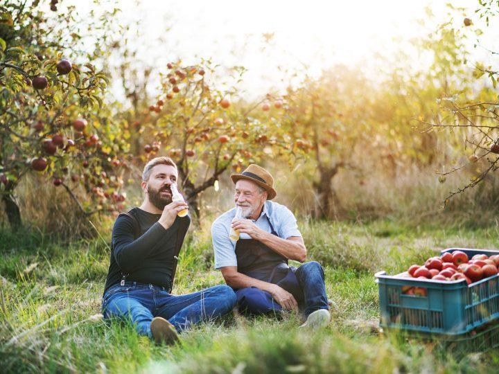Prečo a ako prebytok plodov túto sezónu premeniť na blahodarný elixír?