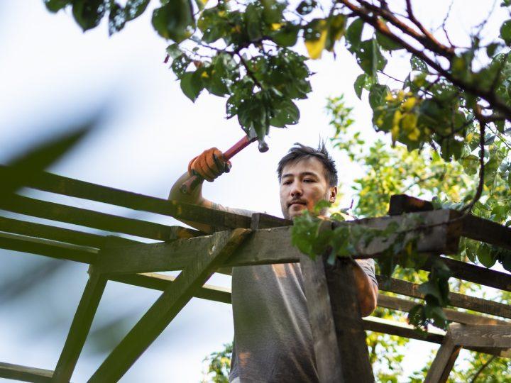 Drevený, kovový či párty altánok. Ktorý najlepšie zapadne do vašej záhrady?